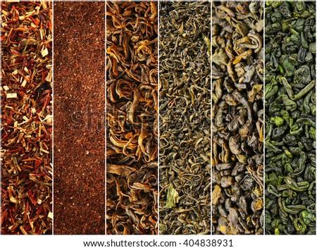 Assortment of dry tea close-up - stock photo