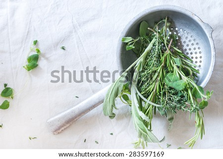 Assortment of fresh herbs thyme, rosemary, sage and oregano in old colander pan on white textile as background. Natural day light. Top view. - stock photo
