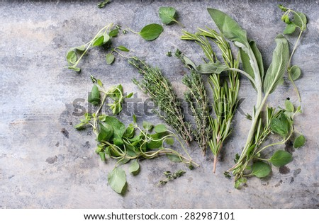 Assortment of fresh herbs thyme, rosemary, sage and oregano over gray metal background. Top view - stock photo
