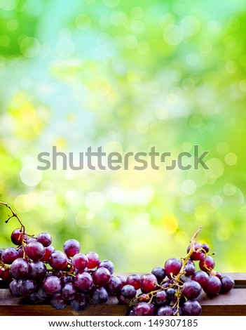 assortment of ripe sweet grapes in basket on sunny background/Grapes in the basket/ Summer Wine Season - stock photo