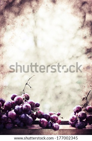 assortment of ripe sweet grapes on textured background/  Wine Season - stock photo