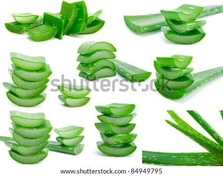 Assortment of sliced aloe leaves isolated on white background - stock photo
