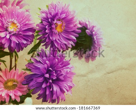 Aster flowers bouquet  in retro style