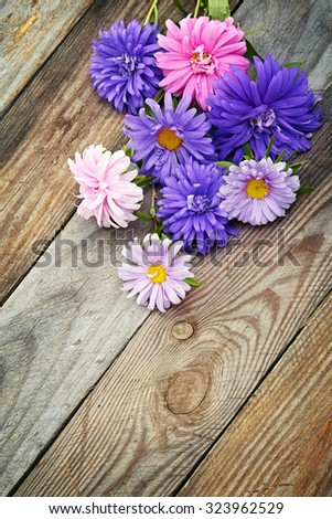 Aster flowers bouquet on wooden background - stock photo