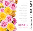 Asters and roses bunch isolated on white background with sample text - stock photo