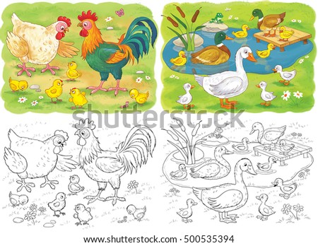 At The Farm Cute Animals Birds Hen Rooster