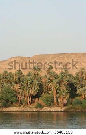At the river Nile - stock photo
