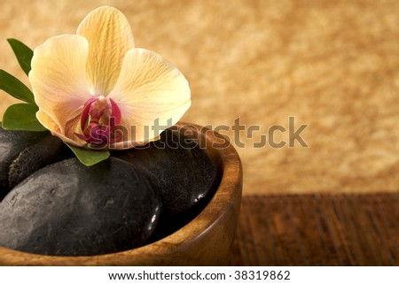 At the Spa - flower with massage stones - copy space - stock photo