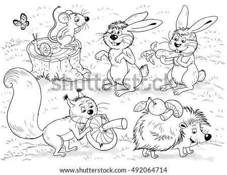 zoo cute forest animals cute woodland stock illustration 492064714 shutterstock. Black Bedroom Furniture Sets. Home Design Ideas