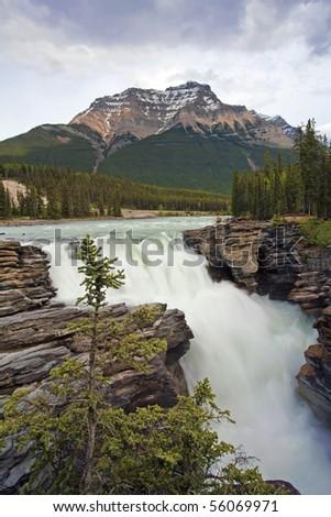 Athabasca Falls in Jasper, Alberta, Canada. - stock photo