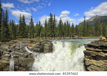 Athabasca falls on the trees and cloudy sky background (Jasper National Park, Alberta, Canada)