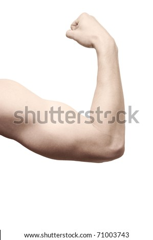 athletic arm on white background - stock photo