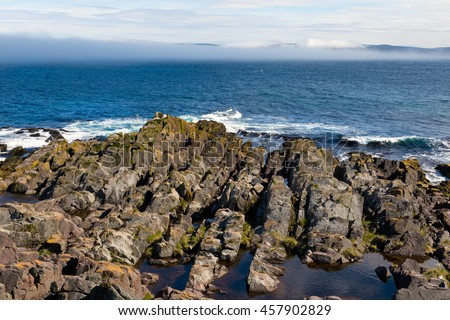 Atlantic ocean and misty shore on the East Coast Trail in Newfoundland north of St. Johns, Canada.  - stock photo