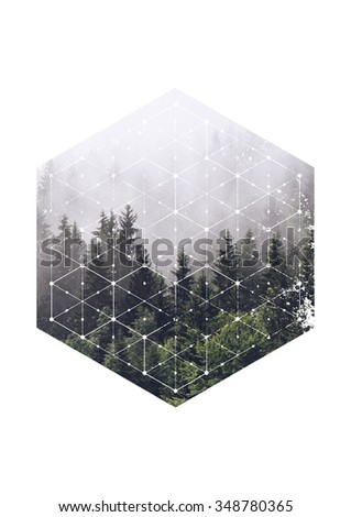 Atmospheric Scenic View of Evergreen Trees Shrouded in Heavy Mist in Hexagon Border with Geometric Line Overlay on White Background with Copy Space - stock photo