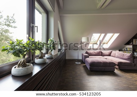 Attic lounge room with large couch and decorative bonsai trees