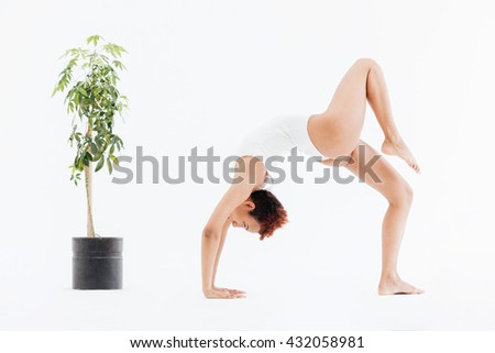 Attractive african american flexible woman doing backbend yoga pose near small tree in pot over white background - stock photo