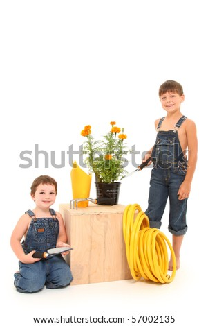 Attractive 3 and 6 year old boys with gardening tools and potted marigold plant over white background. - stock photo
