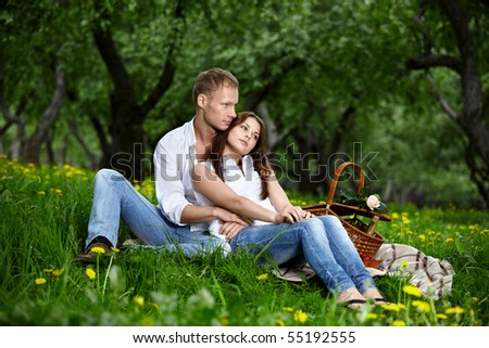 Attractive enamoured couple having embraced on picnic - stock photo