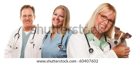 Attractive Female and Male Veterinarian Doctors with Small Puppy Isolated on a White Background. - stock photo
