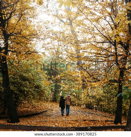 attractive happy luxury couple walking and holding hands in autumn colorful park