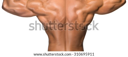 Attractive male back of body builder, isolated on white background - stock photo