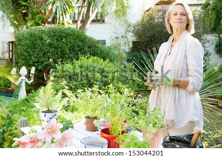 Attractive mature woman doing the gardening and tendering different condiments and aromatic herbs in pots in her home garden during a sunny day, outdoors. - stock photo