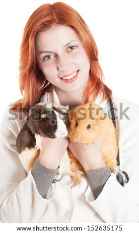 attractive woman veterinarian holding a two guinea pigs on a white background isolated - stock photo