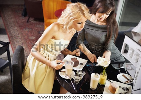 Attractive women browsing internet in a restaurant - stock photo