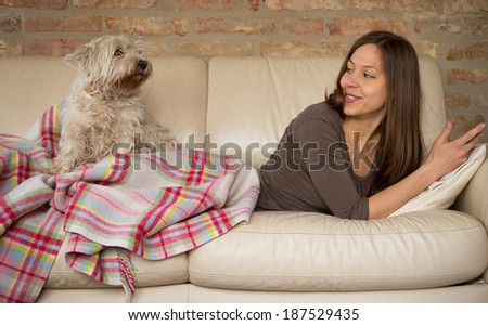 Attractive young girl with westie dog while laying on a bed - stock photo