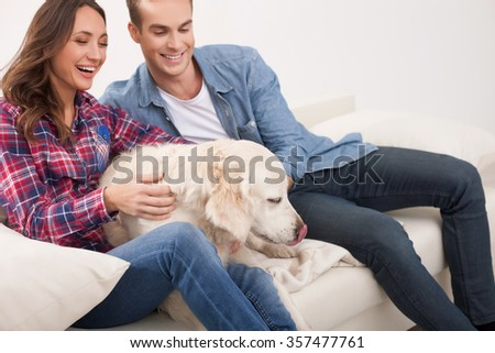 Attractive young man and woman are stroking dog with love. They are sitting on sofa and smiling - stock photo