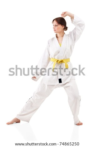 Attractive young sexy women in a karate pose isolated on white