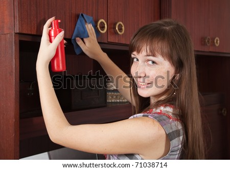 attractive young woman cleaning  furniture at home - stock photo