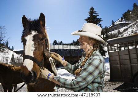Attractive young woman wearing a cowboy hat and grooming a horse. Horizontal shot. - stock photo