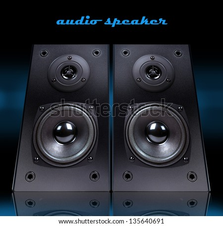 Audio speaker in  case isolated on black background,