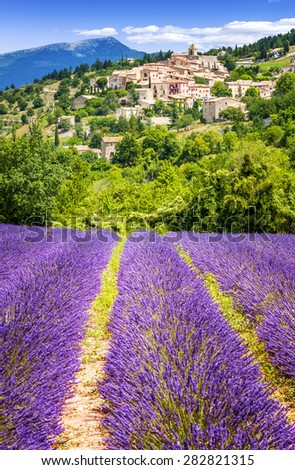 Aurel little village  in south of france with a lavender field in front of it - stock photo