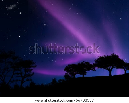 Aurora borealis above the forest - stock photo