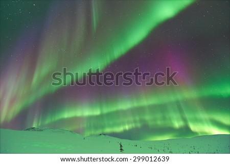 Aurora Borealis. Alaska. - stock photo