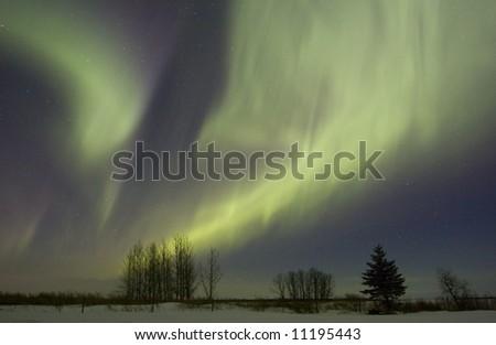 Aurora borealis over fields, Gilbert Plains, Manitoba, Canada - stock photo