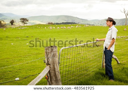 Aussie farmer looking out over a sheep paddock