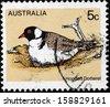 AUSTRALIA - CIRCA 1978: A Stamp printed by AUSTRALIA shows the Hooded Dotterel bird (Charadrius rubricollis), circa 1978 - stock photo