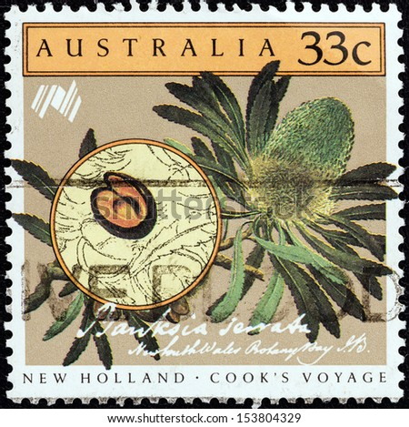 "AUSTRALIA - CIRCA 1986: A stamp printed in Australia from the ""Bicentenary (1988) of Australian Settlement"" 4th issue shows Cook's Voyage to New Holland, Banksia serrata, circa 1986."