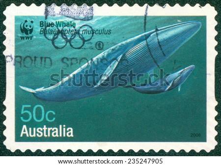 AUSTRALIA - CIRCA 2006: A stamp printed in Australia shows Blue Whale - Balaenoptera musculus, circa 2006 - stock photo