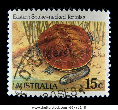 AUSTRALIA - CIRCA 1995: A stamp printed in Australia shows Eastern Snake-necked Tortoise, circa 1995