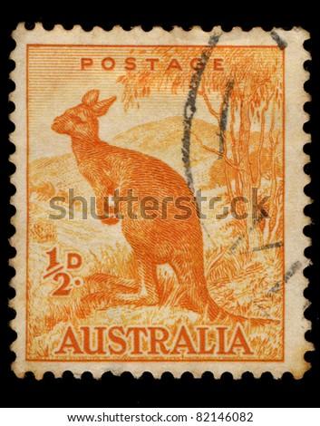 AUSTRALIA - CIRCA 1937: A stamp printed in Australia shows Kangaroo, circa 1937 - stock photo