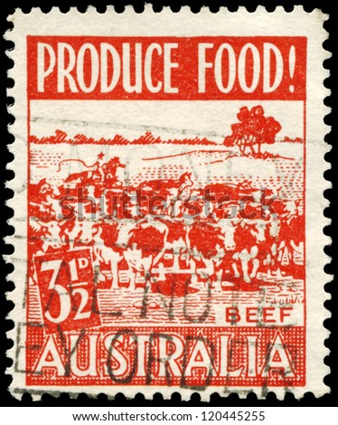 AUSTRALIA - CIRCA 1953: A Stamp printed in AUSTRALIA shows the Cattle, issued to encourage food production, circa 1953 - stock photo