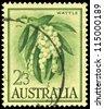 AUSTRALIA - CIRCA 1959: A Stamp printed in AUSTRALIA shows the Golden Wattle, series, circa 1959 - stock photo
