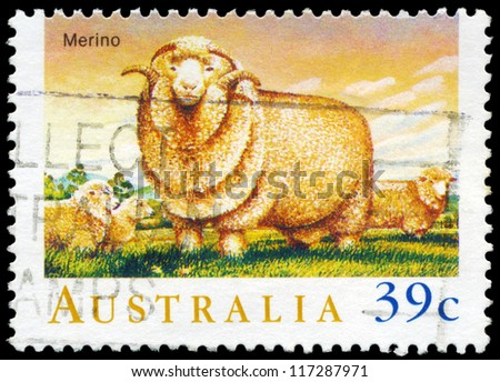 AUSTRALIA - CIRCA 1989: A Stamp printed in AUSTRALIA shows the Merino, Sheep series, circa 1989 - stock photo
