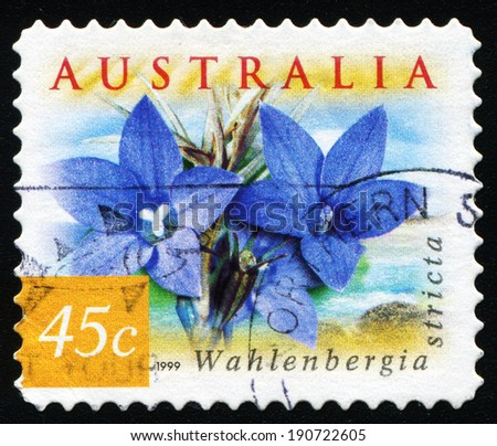 AUSTRALIA - CIRCA 1999: a stamp printed in the Australia shows Australian Bluebell, Wahlenbergia Stricta, Wildflower, circa 1999 - stock photo