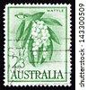 AUSTRALIA - CIRCA 1959: a stamp printed in the Australia shows Golden Wattle, Acacia Pycnantha, Tree, circa 1959 - stock photo