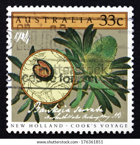 AUSTRALIA - CIRCA 1986: a stamp printed in the Australia shows Saw Banksia, Banksia Serrata, Cook'??s New Holland Expedition, Australian Bicentennial, circa 1986